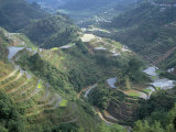 Banaue Terraced Rice Fields, UNESCO World Heritage Site, Island of Luzon, Philippines Photographic Print by Bruno Barbier
