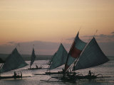 Outrigger Fishing Boats Under Sail, Returning to the Village of Bunutan, Eastern Region, Indonesia Photographic Print by Bruno Barbier