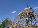 Building a Hut, Gourague Area, Shoa Province, Ethiopia, Africa Photographic Print by Bruno Barbier