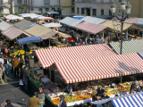 Flower Market, Cours Saleya, Nice, Alpes-Maritimes, Provence, France Photographic Print by Bruno Barbier
