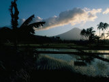 Reflections in Water of Rice Paddies, Amed Village, Island of Bali, Indonesia, Southeast Asia Photographic Print by Bruno Barbier