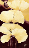 Yellow Poppies III Prints by Jettie Roseboom