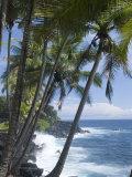 Puna (Black Sand) Beach, Island of Hawaii (Big Island), Hawaii, USA Photographic Print by Ethel Davies
