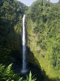 Akaka Falls, the Island of Hawaii (Big Island), Hawaii, USA Photographic Print by Ethel Davies