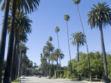 Beverly Drive, Beverly Hills, California, USA Photographic Print by Ethel Davies