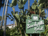 Beverly Hills Hotel, Beverly Hills, California, USA Photographic Print by Ethel Davies