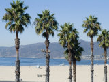 Santa Monica Beach, Santa Monica, California, USA Photographic Print by Ethel Davies