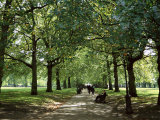 Green Park, London, England, United Kingdom Photographic Print by Ethel Davies
