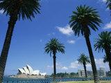Sydney Opera House, Sydney, New South Wales, Australia Photographic Print by Neale Clarke