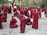 Monks Learning Session, with Masters and Students, Sera Monastery, Tibet, China Photographic Print by Ethel Davies