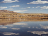 Lago Argentino, El Calafate, Patagonia, Argentina, South America Photographic Print by Mark Chivers