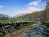 White Moss Common, Rydal, Lake District, Cumbria, England, United Kingdom Photographic Print by Neale Clarke
