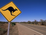 Kangaroo Road Sign, Flinders Range, South Australia, Australia Photographic Print by Neale Clarke