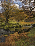 Autumn Colours, Watendlath Beck, Borrowdale, Lake District National Park, Cumbria, England Photographic Print by Neale Clarke