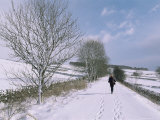 Footprints in Snow, Hartington, Tissington Trail, Derbyshire, England, United Kingdom Photographic Print by Neale Clarke