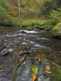 Autumn Colours at Aira Beck Which Flows from Aira Force into Ullswater, Cumbria, UK Photographic Print by Neale Clarke