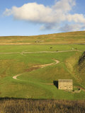 Stone Barn and Winding Track Near Keld, Yorkshire Dales National Park, Yorkshire, England Photographic Print by Neale Clarke