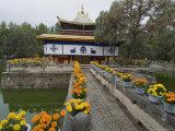 Dalai Lama's Former Summer Palace, Lhasa, Tibet, China Photographic Print by Ethel Davies