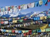 Prayer Flags, Himalayas, Tibet, China Reproduction photographique par Ethel Davies