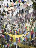 Prayer Flags, Druk Wangyal Chorten, Bhutan Photographic Print by Angelo Cavalli