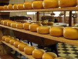 Dutch Cheese, Zaanse Schans, Zaandam Near Amsterdam, Holland (The Netherlands) Photographic Print by Gary Cook