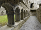Cloister, Ross Errilly Franciscan Friary, Near Headford, County Galway, Connacht, Ireland Photographic Print by Gary Cook