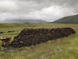 Cut Peat Stacked up for Winter, Connemara, County Galway, Connacht, Republic of Ireland Lámina fotográfica por Gary Cook