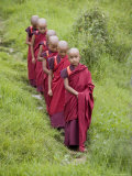 Buddhist Monks from Karchu Dratsang Monastery, Jankar, Bumthang, Bhutan Photographic Print by Angelo Cavalli