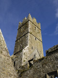 Ross Errilly Franciscan Friary, Near Headford, County Galway, Connacht, Republic of Ireland Photographic Print by Gary Cook