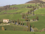 Road and Cypresses Near Pienza, Val d'Orcia, Tuscany, Italy Photographic Print by Angelo Cavalli