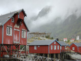 Seagulls Nesting on a Warehouse, Moskenesoya, Lofoten Islands, Norway, Scandinavia Photographic Print by Gary Cook