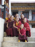 Group of Young Buddhist Monks, Karchu Dratsang Monastery, Jankar, Bumthang, Bhutan Photographic Print by Angelo Cavalli