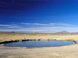 Village Pond at San Juan, Salar De Uyuni, Bolivia, South America Photographic Print by Mark Chivers