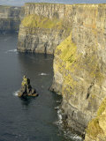 Cliffs of Moher, County Clare, Munster, Republic of Ireland Photographic Print by Gary Cook