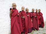 Young Buddhist Monks, Karchu Dratsang Monastery, Bumthang, Bhutan Photographic Print by Angelo Cavalli