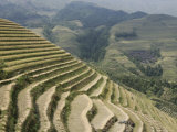 Longsheng Terraced Ricefields, Guilin, Guangxi Province, China Photographic Print by Angelo Cavalli