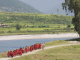 Buddhist Monks from Punakha Dzong, Going to River for Meditation, Punakha, Bhutan Photographic Print by Angelo Cavalli