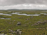 Bog Land, Connemara, Connacht, Ireland Photographic Print by Gary Cook