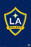 LA Galaxy Print