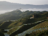 Sunrise in June, Longsheng Terraced Ricefields, Guangxi Province, China Photographic Print by Angelo Cavalli