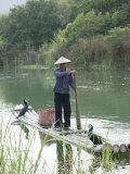 Fisherman with Cormorants, Yangshuo, Li River, Guangxi Province, China Photographic Print by Angelo Cavalli