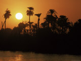 Sun Setting Behind Palms Across the River Nile's West Bank, Luxor, Thebes, Egypt Photographic Print by Ken Gillham