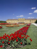 Palace and Gardens, Schonbrunn, Unesco World Heritage Site, Vienna, Austria Photographic Print by Peter Scholey
