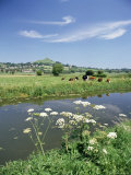 River Brue with Glastonbury Tor in the Distance, Somerset, England, United Kingdom Photographie par Chris Nicholson