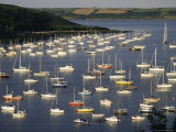 Yachts at Anchorage, Falmouth, Cornwall, England, United Kingdom Photographic Print by Ken Gillham