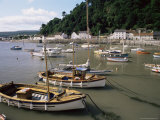 The Harbour, Minehead, Somerset, England, United Kingdom Photographic Print by Chris Nicholson