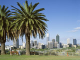Palm Trees and City Skyline, Perth, Western Australia, Australia Photographic Print by Peter Scholey