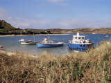 Bryher, Isle of Scilly, United Kingdom Photographic Print by Robert Harding