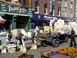Moore Street Market, Dublin, County Dublin, Eire (Ireland) Photographic Print by Ken Gillham