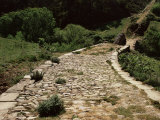 Roman Road Near Cirauqui, on the Camino, Navarre, Photographic Print